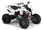 Yamaha YFM250R: подробнее