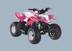 Квадроцикл Outlaw 50: подробнее