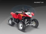 Квадроцикл Phoenix 200: подробнее
