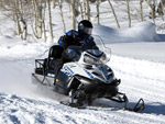 Polaris FS IQ WIDETRAK: подробнее