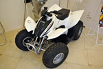 Б/у мотовездеход Honda TRX 90 EX: подробнее