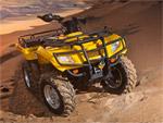 Квадроцикл Stels ATV 400 Hunter: подробнее