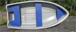 Лодка Delta Marine 310: подробнее